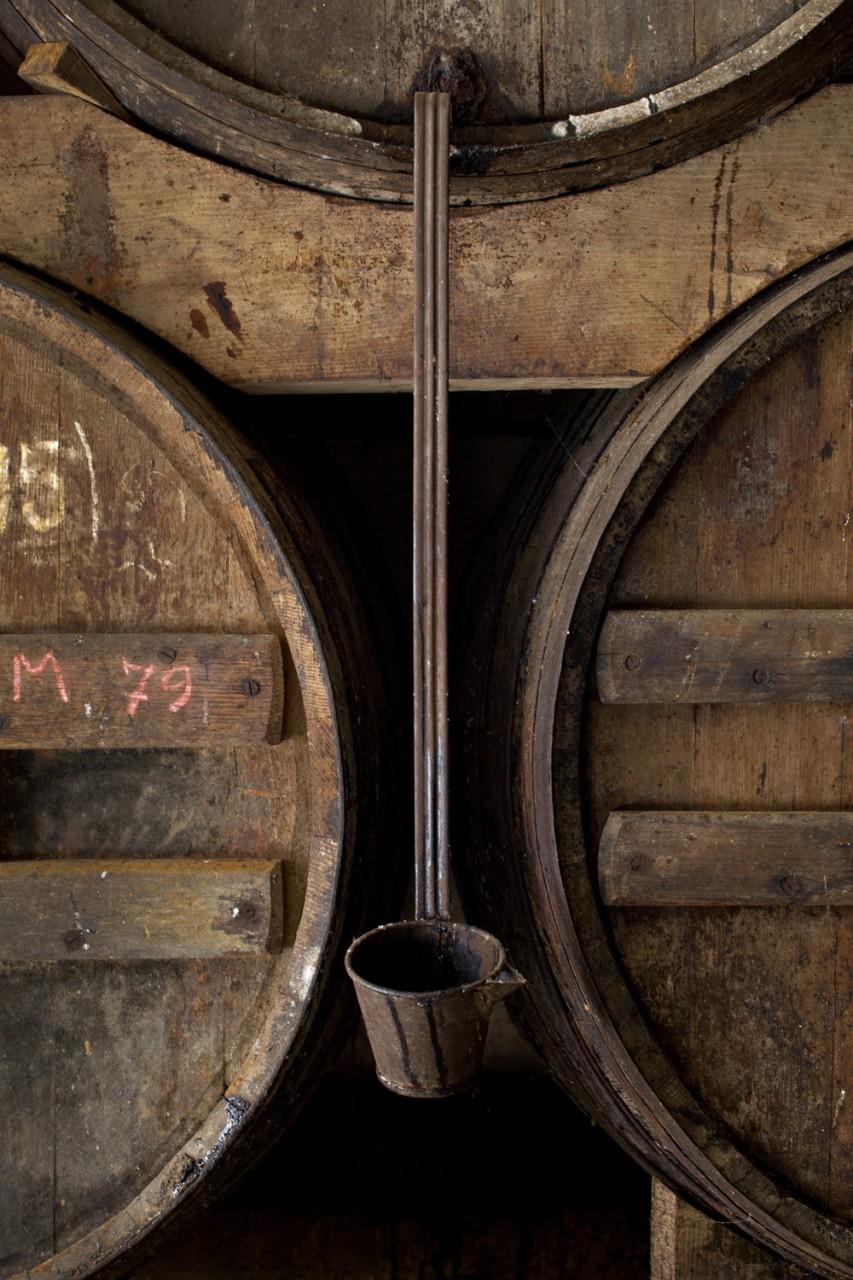 Catalunya-vi-cava-denominacio-origen-cellers-vinya 012