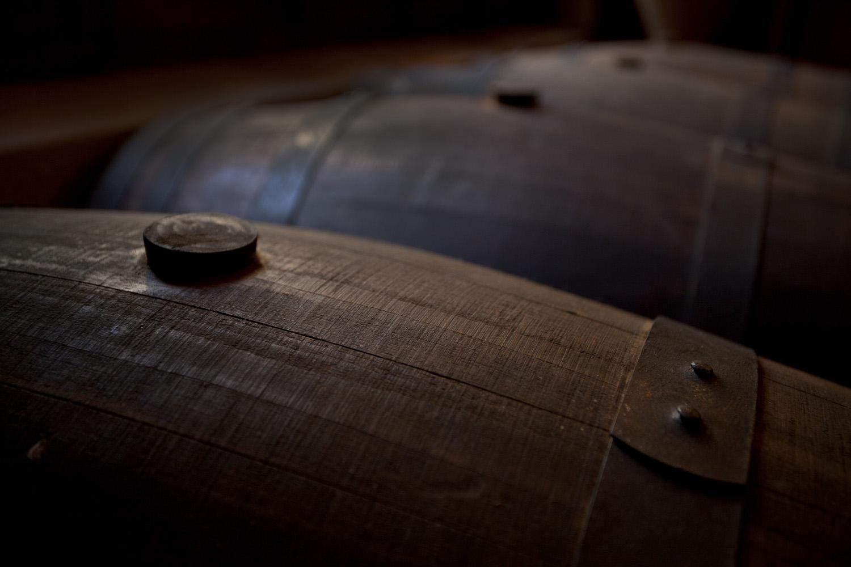 Catalunya-vi-cava-denominacio-origen-cellers-vinya 023