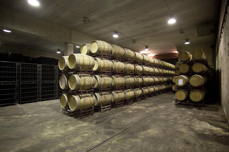 Catalunya-vi-cava-denominacio-origen-cellers-vinya 024