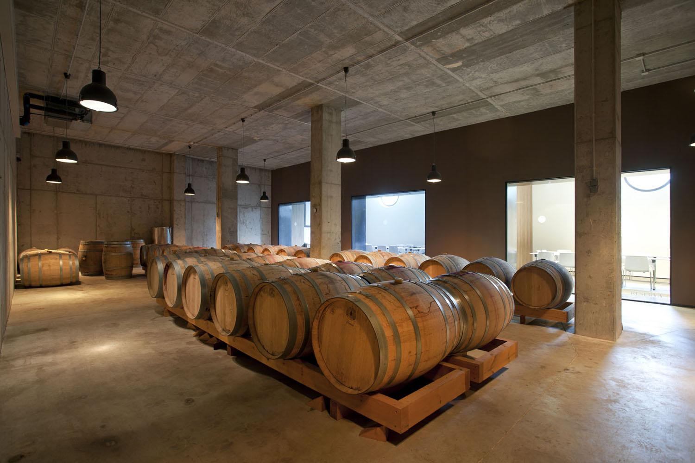 Catalunya-vi-cava-denominacio-origen-cellers-vinya 026