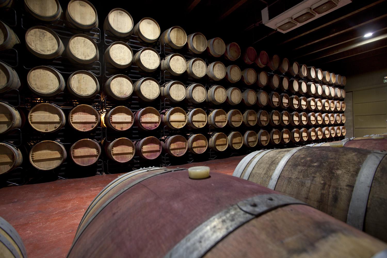 Catalunya-vi-cava-denominacio-origen-cellers-vinya 032